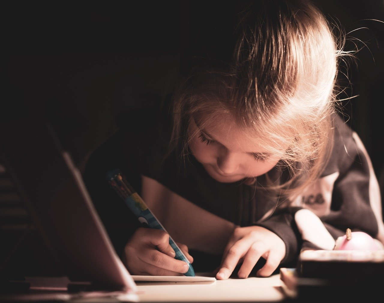 Read more about the article Advantages and Disadvantages of Homework